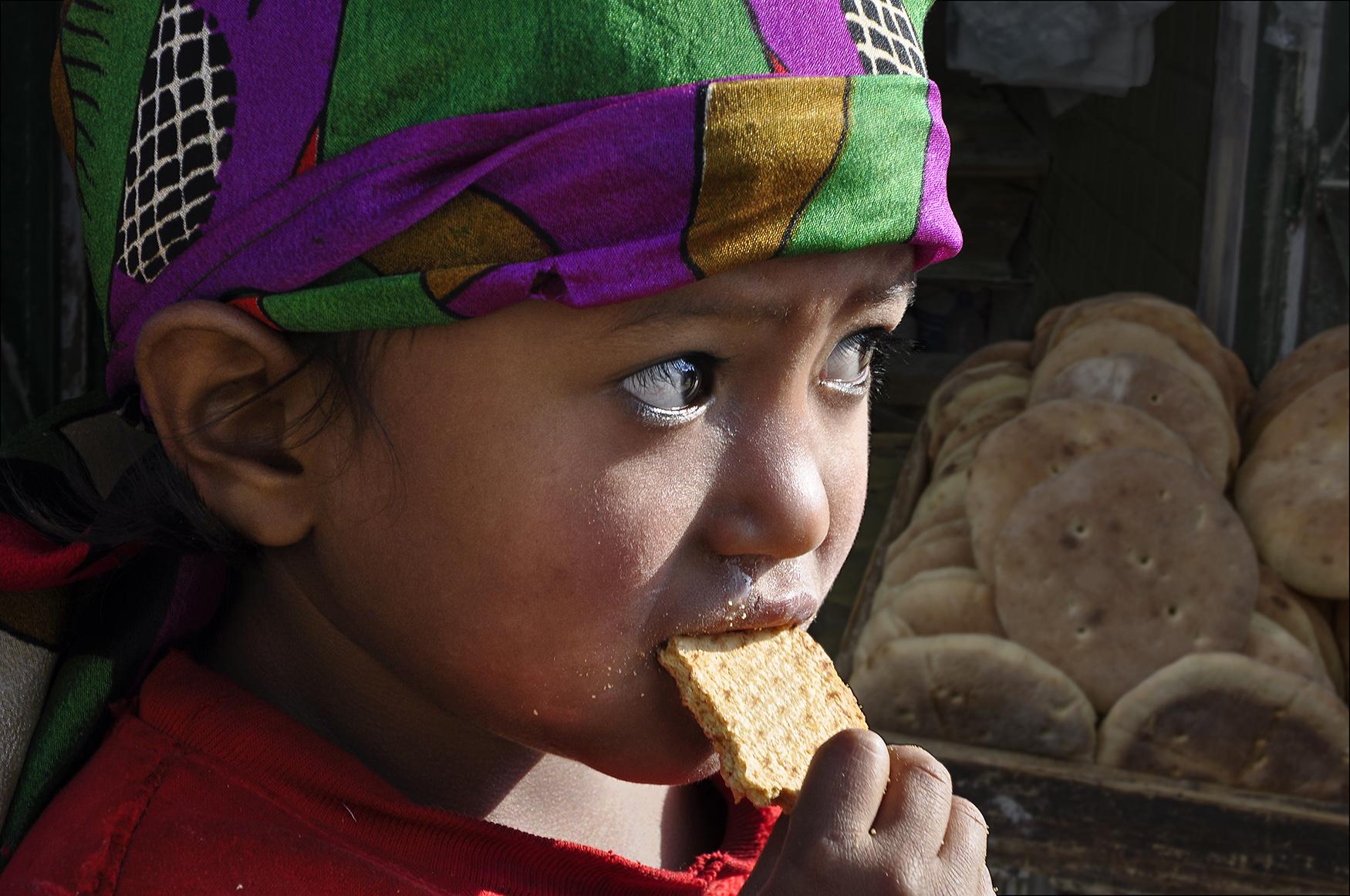 Brood, Nepal